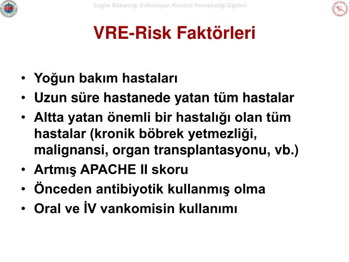 VRE-Risk Faktörleri