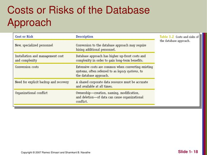 Costs or Risks of the Database Approach