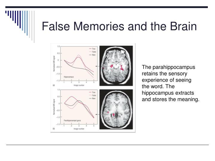 False Memories and the Brain