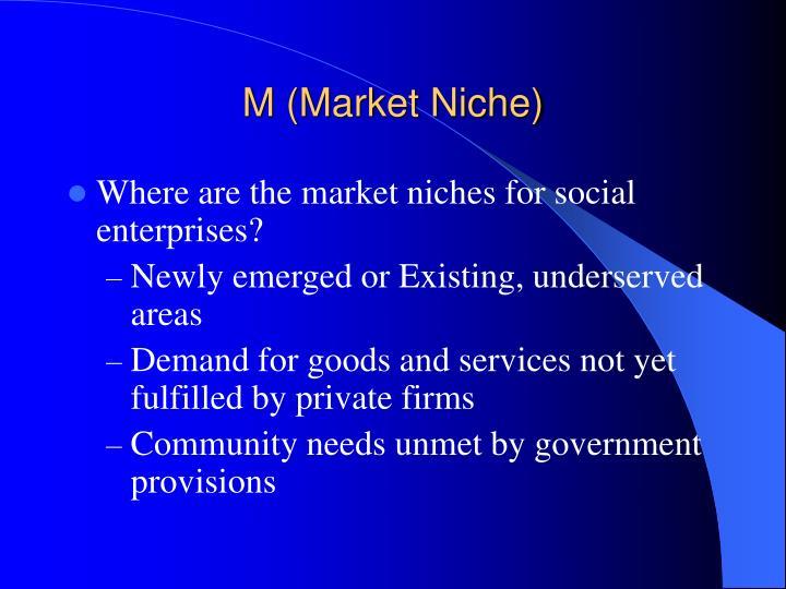 M (Market Niche)