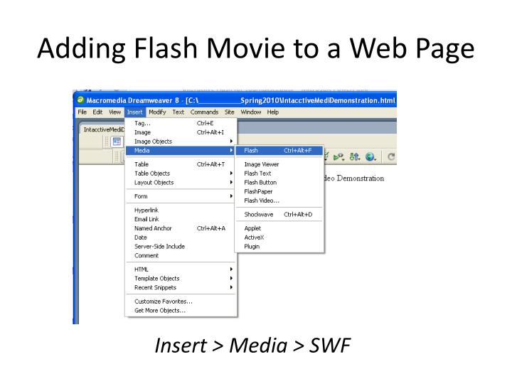Adding Flash Movie to a Web Page