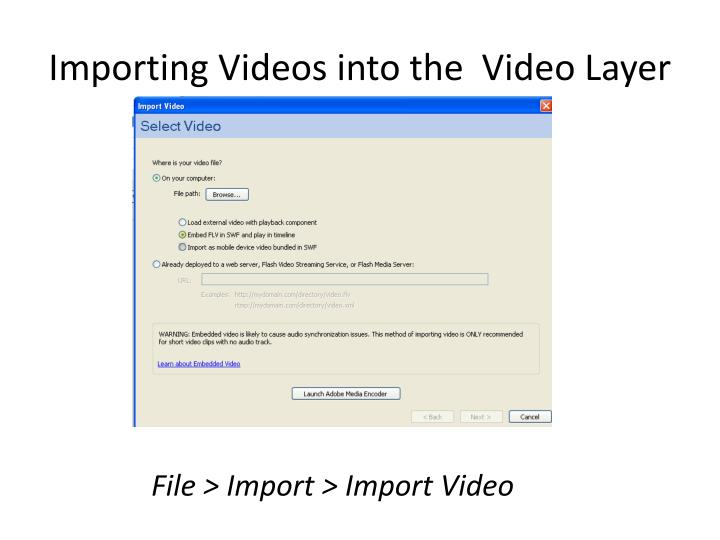 Importing Videos into the  Video Layer