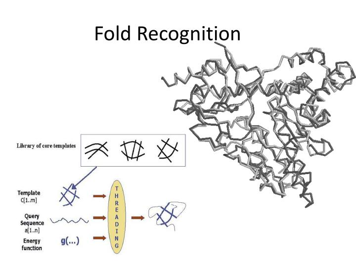 Fold Recognition