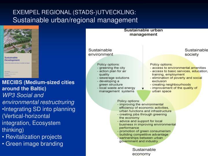 EXEMPEL REGIONAL (STADS-)UTVECKLING: