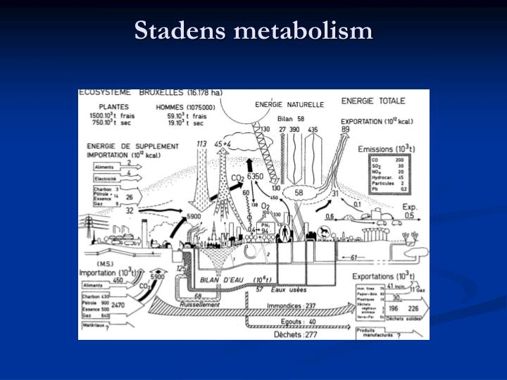 Stadens metabolism