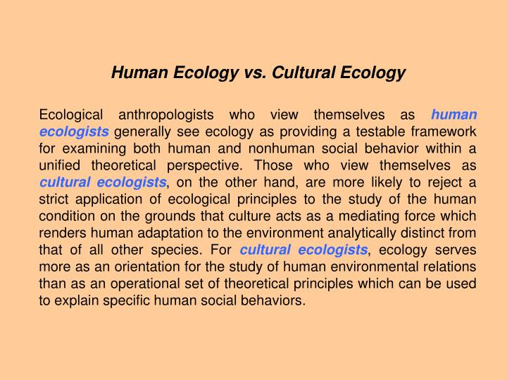 a study of cultural ecology My work at the television station is really challenging we have a new program coming out next week and everyone is excited for the first broadcast.