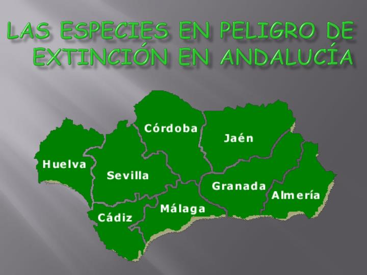 Las especies en peligro de extinción en Andalucía