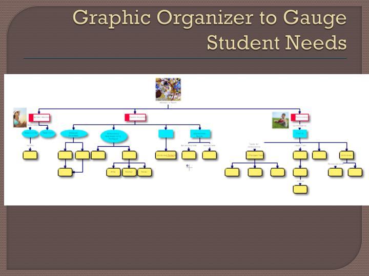 Graphic Organizer to Gauge Student Needs