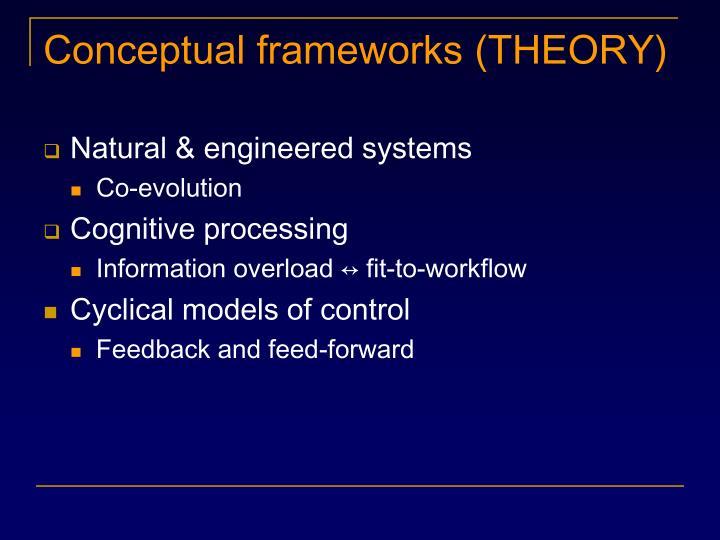 Conceptual frameworks (THEORY)