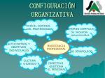 configuraci n organizativa