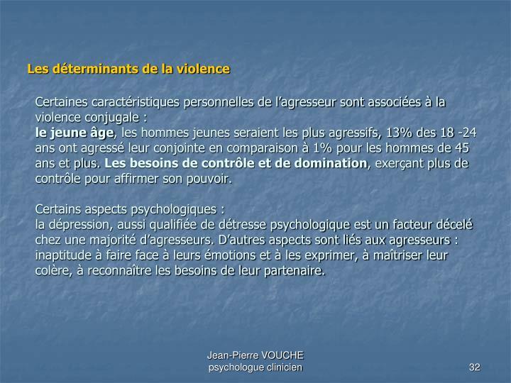 Certaines caractéristiques personnelles de l'agresseur sont associées à la violence conjugale: