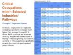 critical occupations within selected industries pathways4