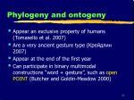 phylogeny and ontogeny