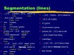 segmentation lines