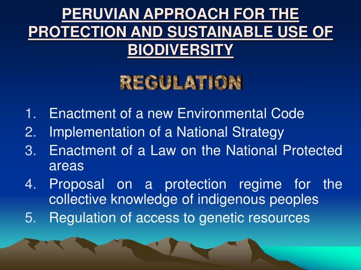 Peruvian approach for the protection and sustainable use of biodiversity