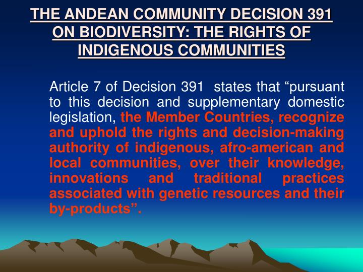 THE ANDEAN COMMUNITY DECISION 391  ON BIODIVERSITY: THE RIGHTS OF INDIGENOUS COMMUNITIES
