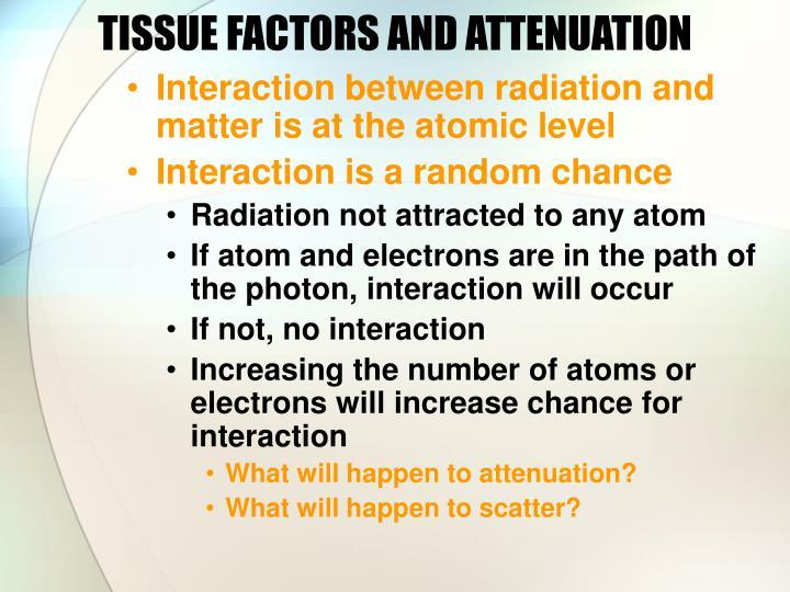 TISSUE FACTORS AND ATTENUATION