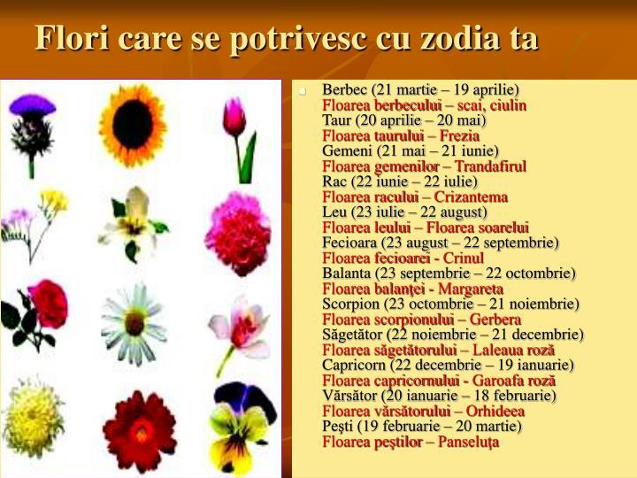 Flori care se potrivesc cu zodia ta