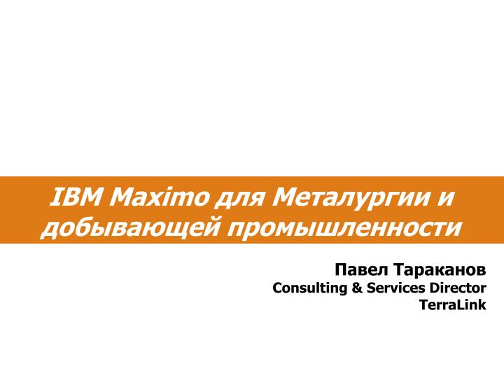 Consulting services director terralink