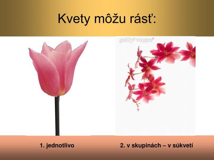 Kvety môžu rásť: