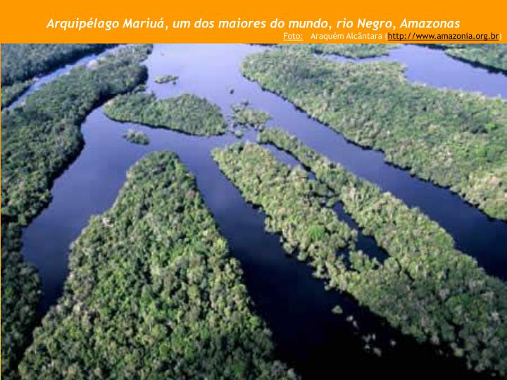 Arquipélago Mariuá, um dos maiores do mundo, rio Negro, Amazonas