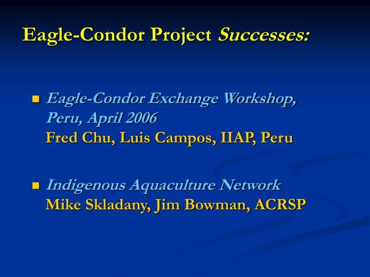 Eagle condor project successes