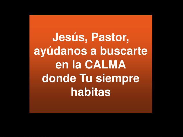 Jesús, Pastor, ayúdanos a buscarte en la CALMA