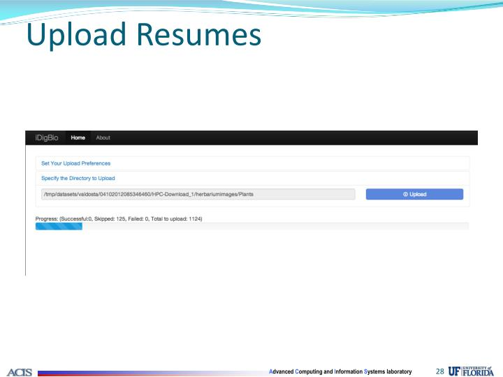 Upload Resumes