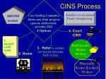 cins process