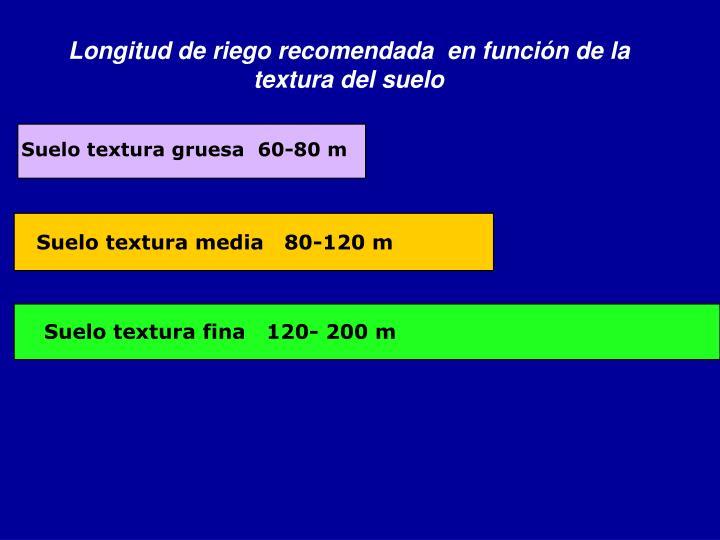 Suelo textura gruesa  60-80 m