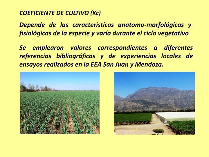 COEFICIENTE DE CULTIVO (Kc)