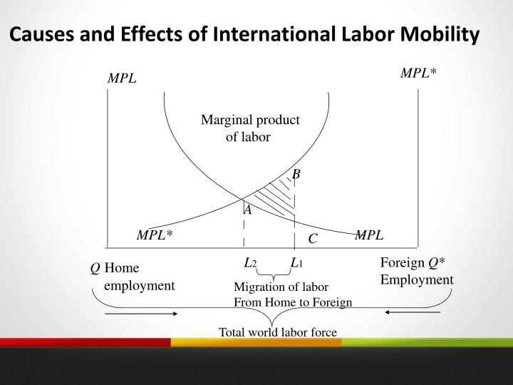 Causes and Effects of International Labor Mobility