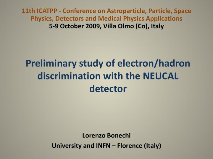 Preliminary study of electron hadron discrimination with the neucal detector