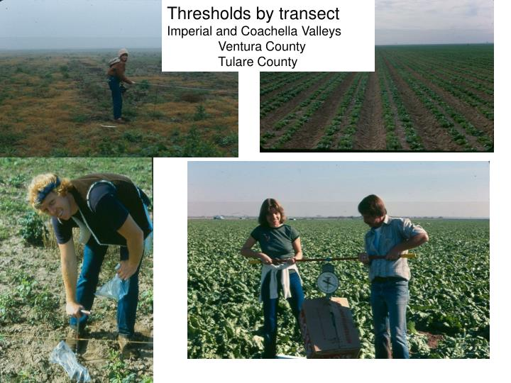Thresholds by transect