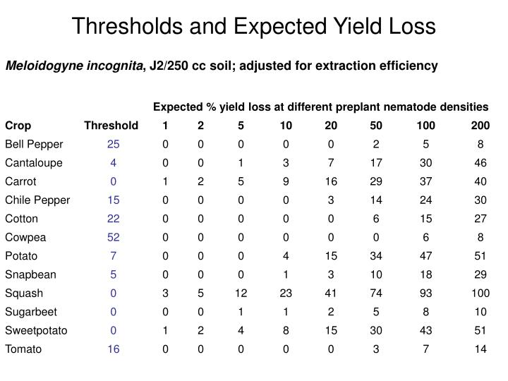 Thresholds and Expected Yield Loss