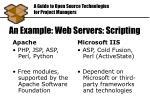 an example web servers scripting
