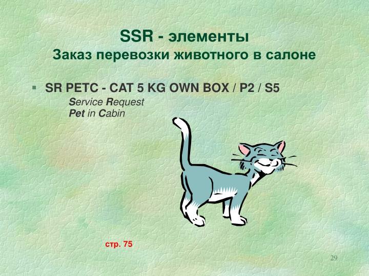 SSR -