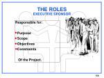 the roles executive sponsor