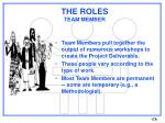 the roles team member