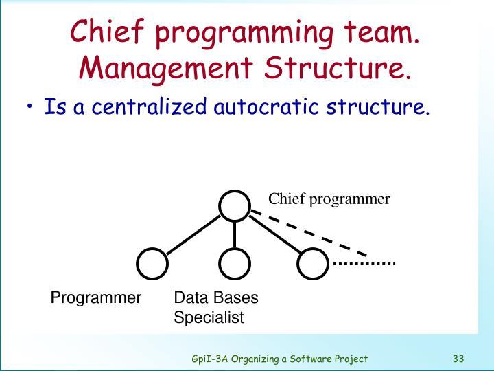 Chief programming team. Management Structure.