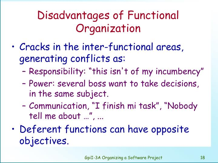 Disadvantages of Functional Organization