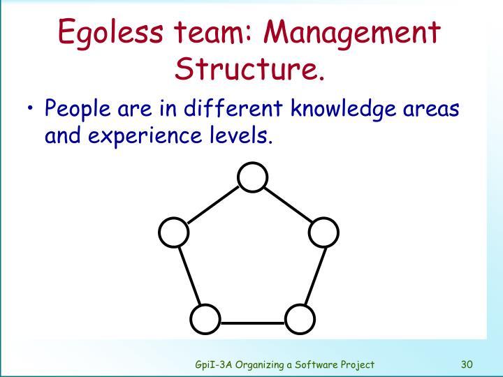 Egoless team: Management Structure.