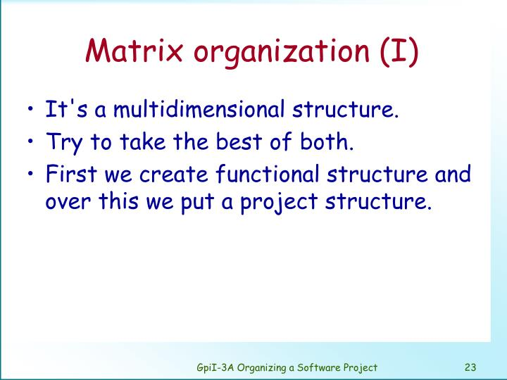 Matrix organization (I)
