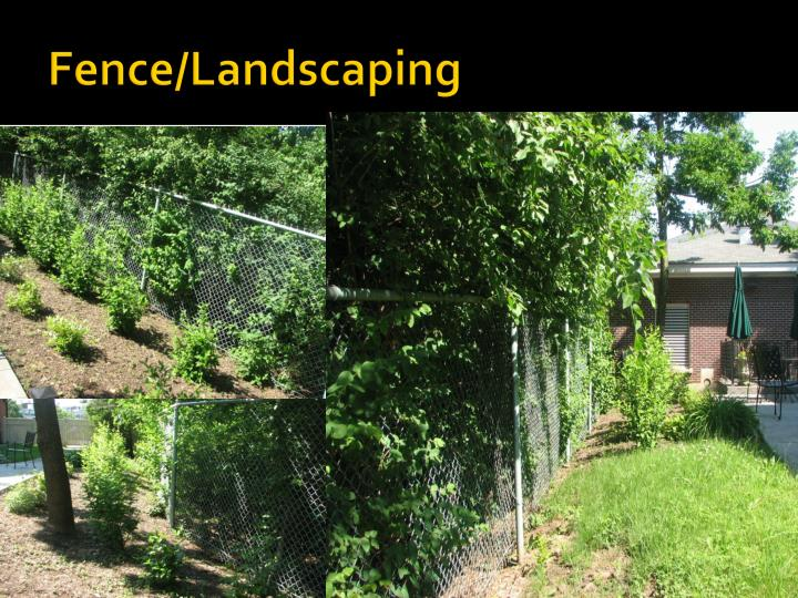 Fence/Landscaping