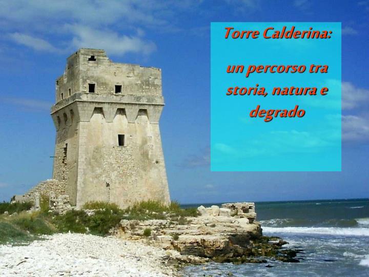 Torre Calderina: