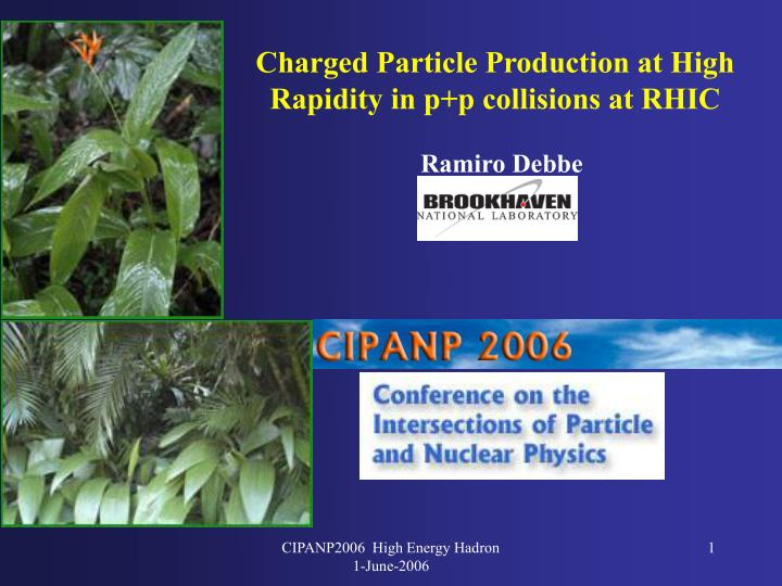 Charged Particle Production at High Rapidity in p+p collisions at RHIC