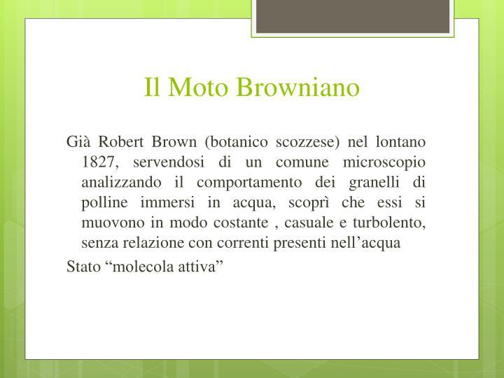 Il Moto Browniano