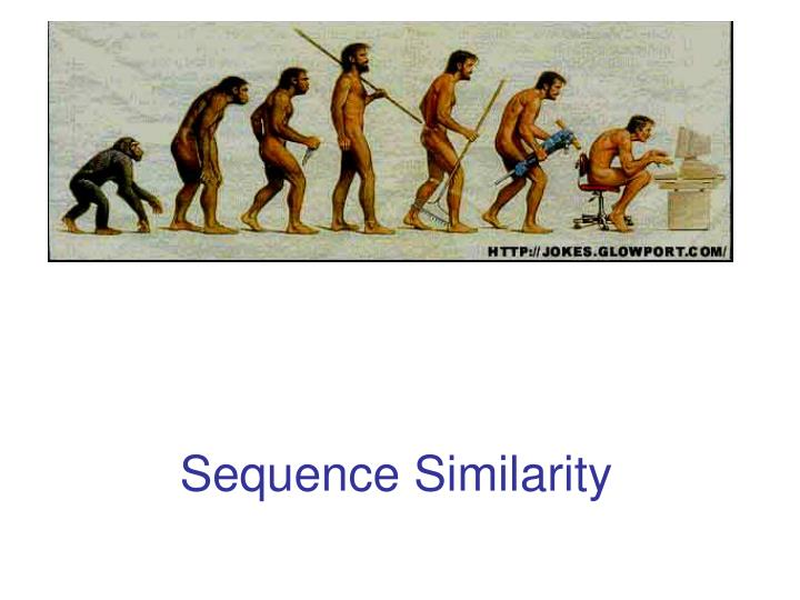 sequence similarity n.