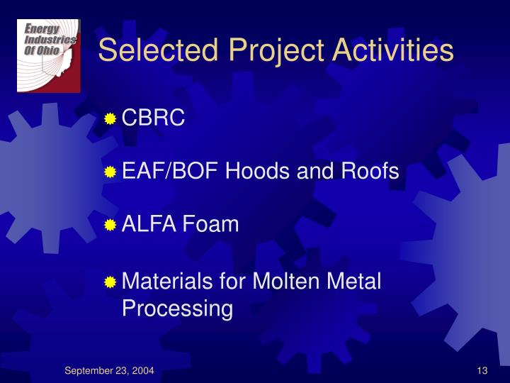 Selected Project Activities