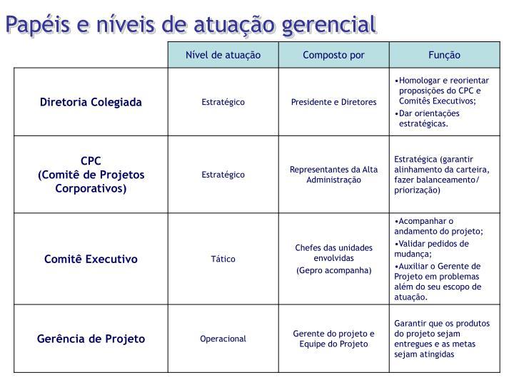 Papéis e níveis de atuação gerencial